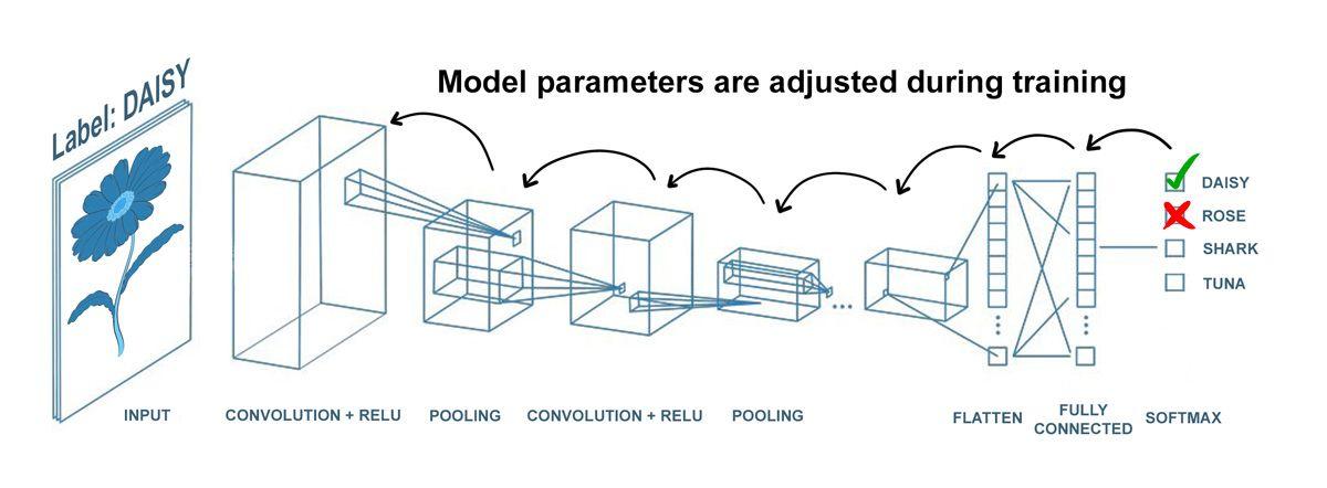 dl-engineers-ebook-ch1-model-training-daisy
