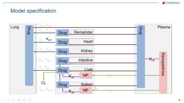 Learn about the new features in SimBiology that help span modeling and simulation workflows from pharmacokinetic (PK) to quantitative systems pharmacology (QSP) modeling. Highlights include NCA analysis, confidence intervals, and parallel computing.
