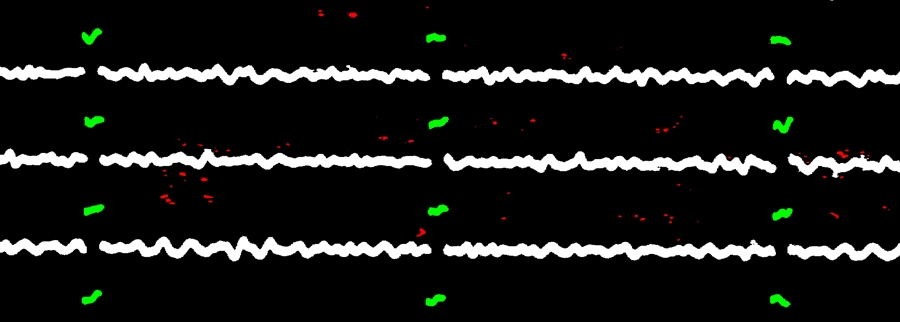 Figure 4. A seismogram in which objects have been classified as traces (white), time marks (green), and noise (red).