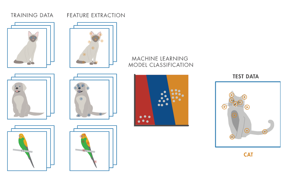 Machine Learning Workflow