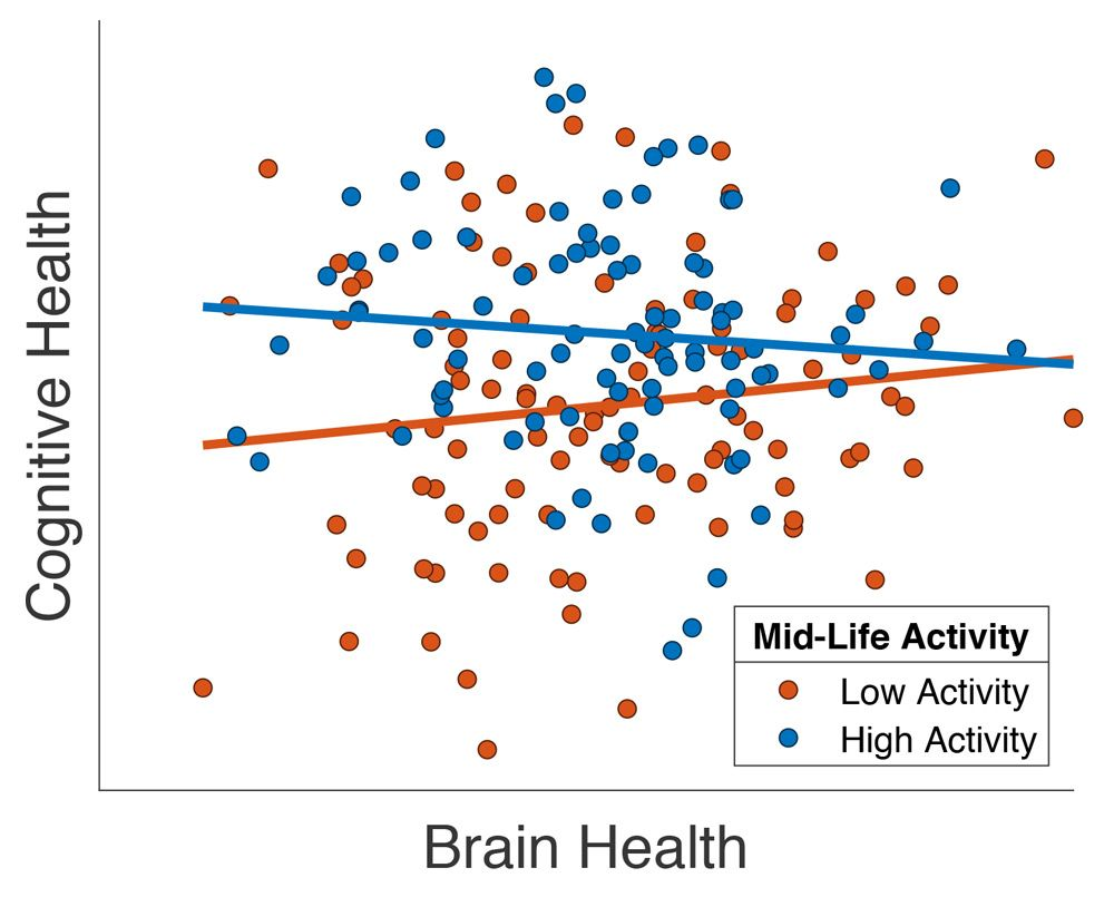 Graph showing the brain health of senior patients is improved if they report high levels of mid-life social activity